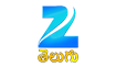 Zee Telugu USA